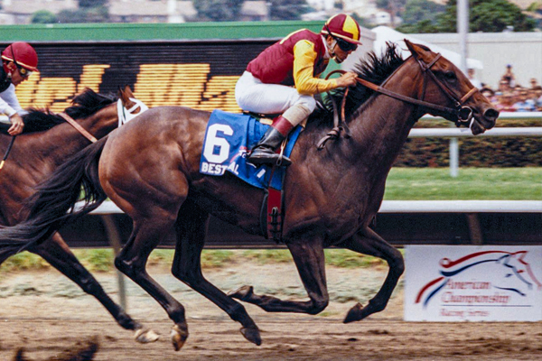 BEST PAL winning the first running of the Grade 1 Pacific Classic at the Del Mar Racetrack