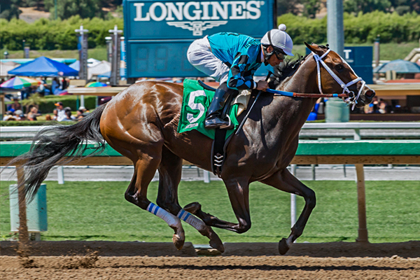 SURRENDER NOW winning the Landaluce Stakes at Santa Anita 7/3/17. (Benoit Photo)