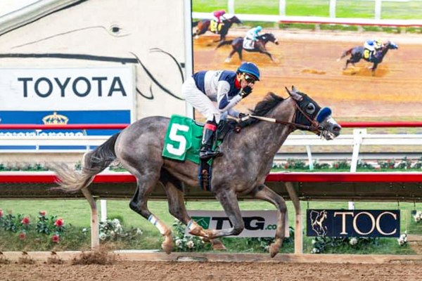 American Theorem First win on 8-31-19 at Del Mar Racetrack